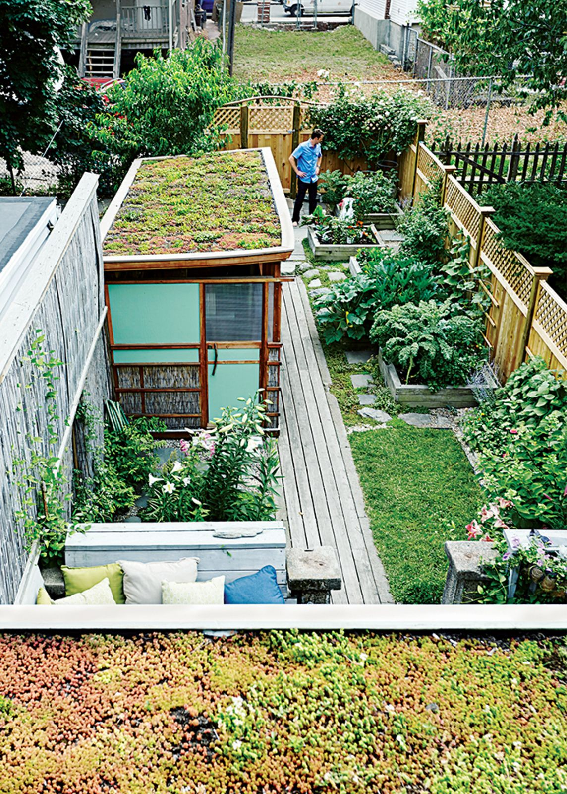 Run Down Row House In Boston Becomes A Quiet Urban Escape With Two Green Roofs Roof Plants Green Roof House Backyard Row house backyard design
