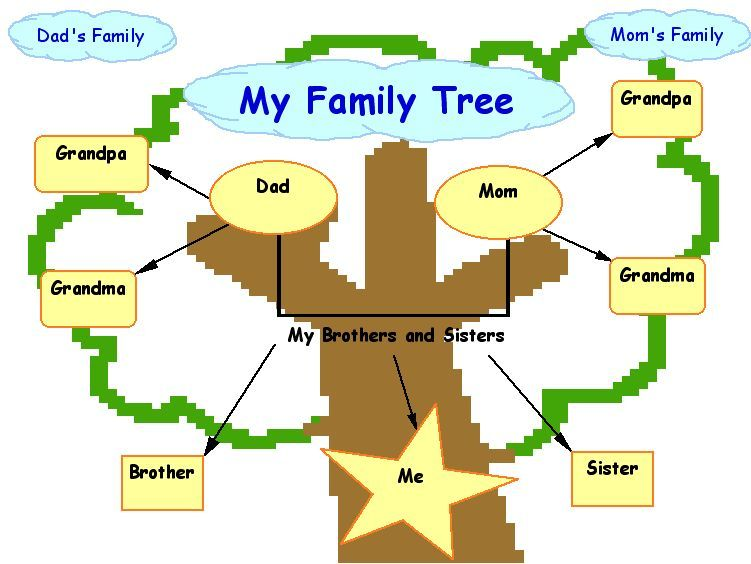 Family tree on pinterest family tree templates family for How to draw a family tree template