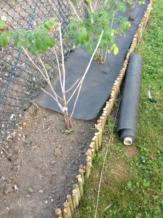 diy beeteinfassung aus holz gardening pinterest garten pflanzen und garten pflanzen. Black Bedroom Furniture Sets. Home Design Ideas