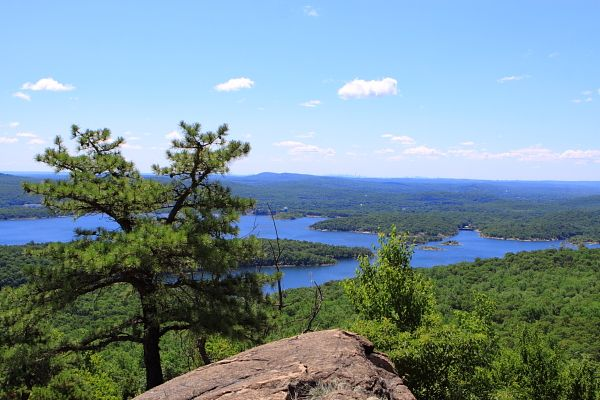High Point in Norvin Green State Forest, NJ | Favorite Places ... on