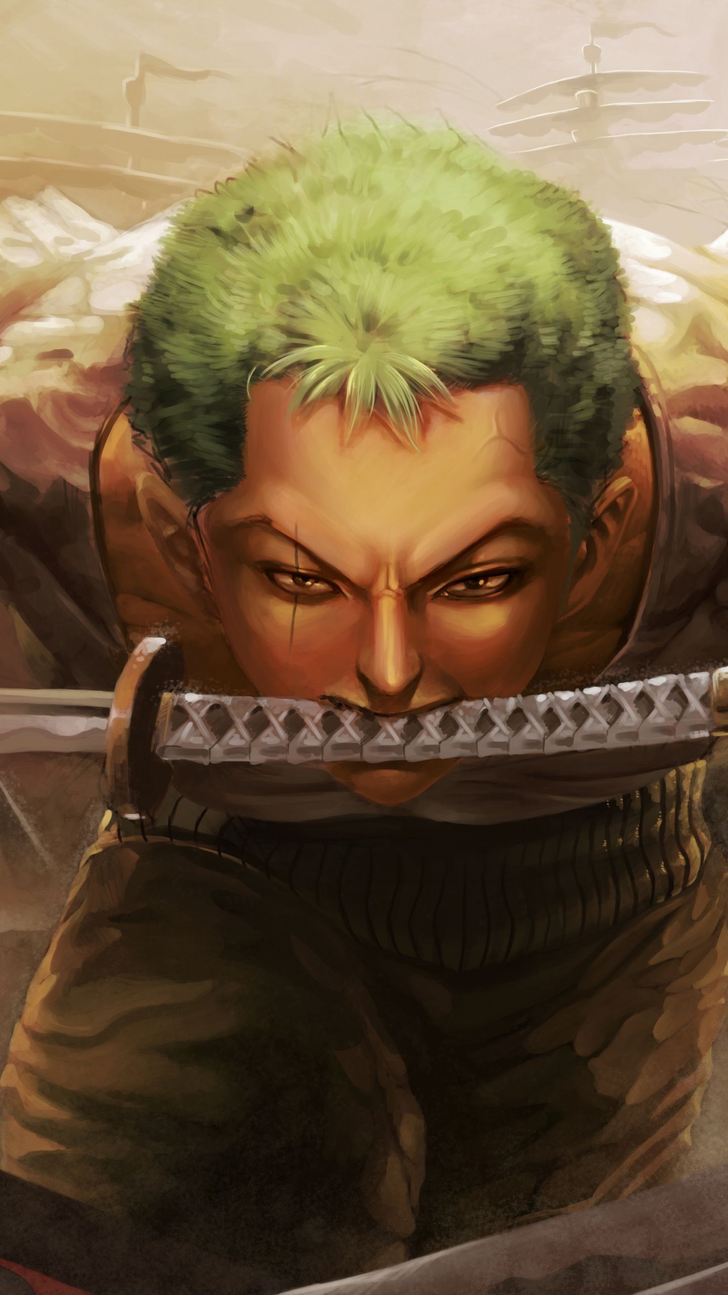 1440 X 2560 Wallpaper One Piece Download 1440x2560 Wallpaper Roronoa Zoro One Piece Katana Portra In 2020 Hd Anime Wallpapers Trafalgar Law Wallpapers Hd Backgrounds