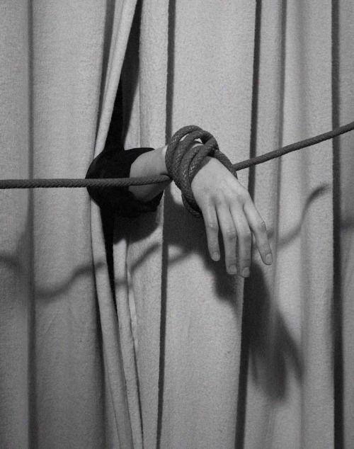 Vivid   Annabelle by Nicolas Duc