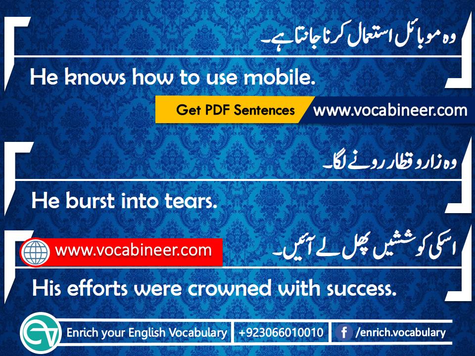 Sentences English Sentences Learn English English Lectures English English Vocabulary Urdu To Englis English Vocabulary Learn English Words Learn English
