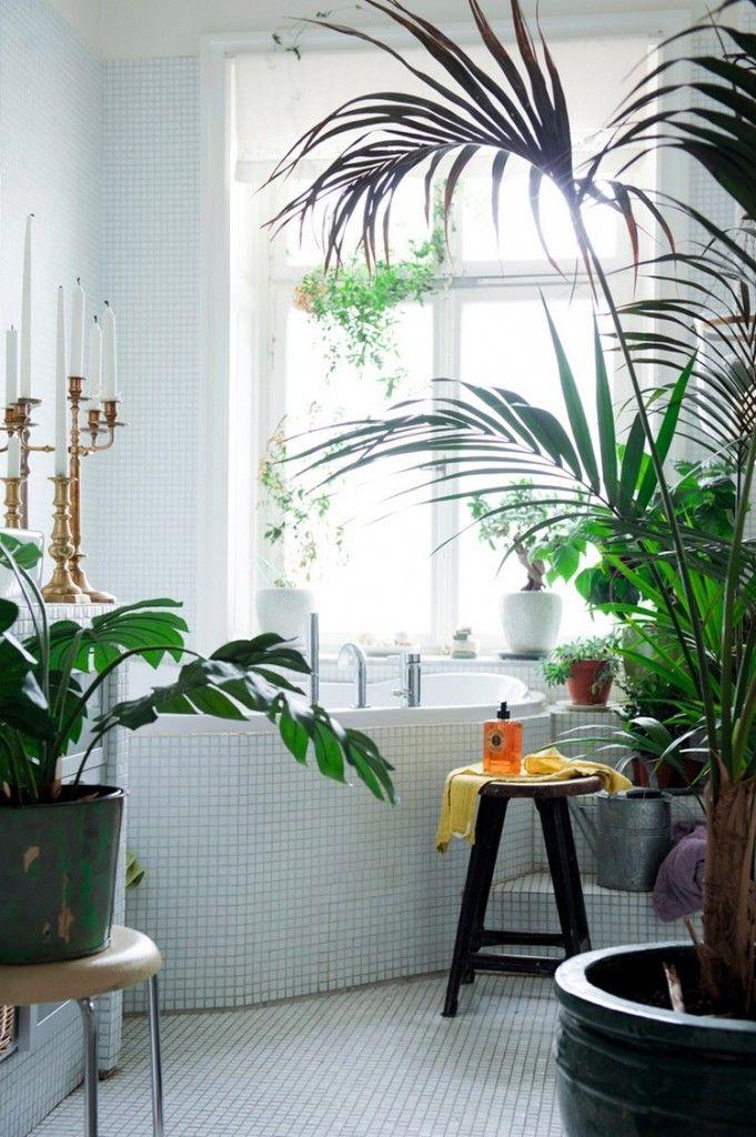 De 10 meest creatieve badkamers met planten - Badkamer, Planten en ...