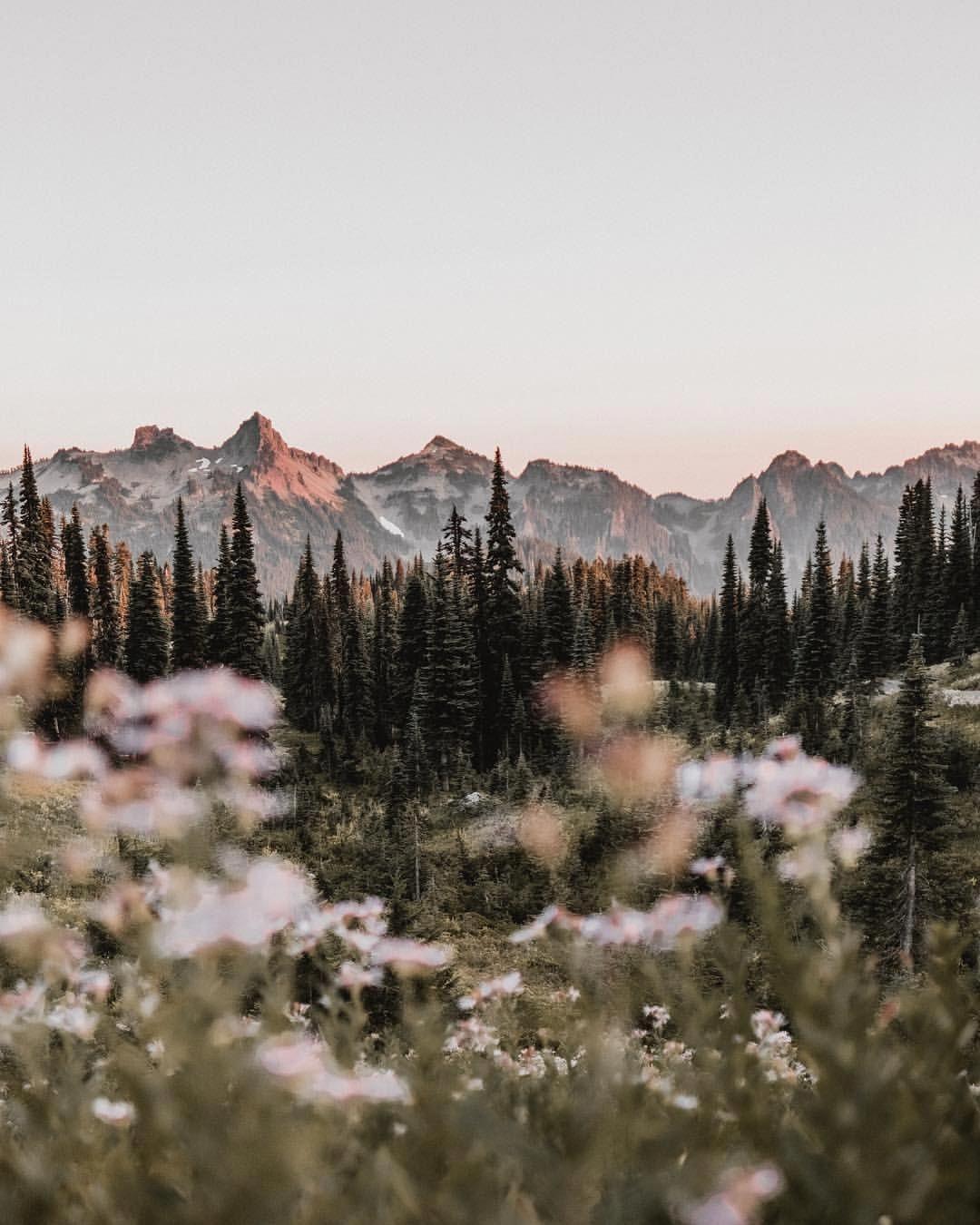Landscape Photography Horizontal Landscapephotographytips In 2020 Nature Photography Nature Aesthetic Beautiful Landscapes