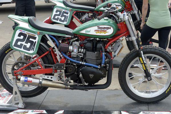 Shayna Texter S Latus Motors Racing Castrol Oil Triumph Bonneville Flat Track Motorcycle Flat Track Racing Triumph Motorcycles