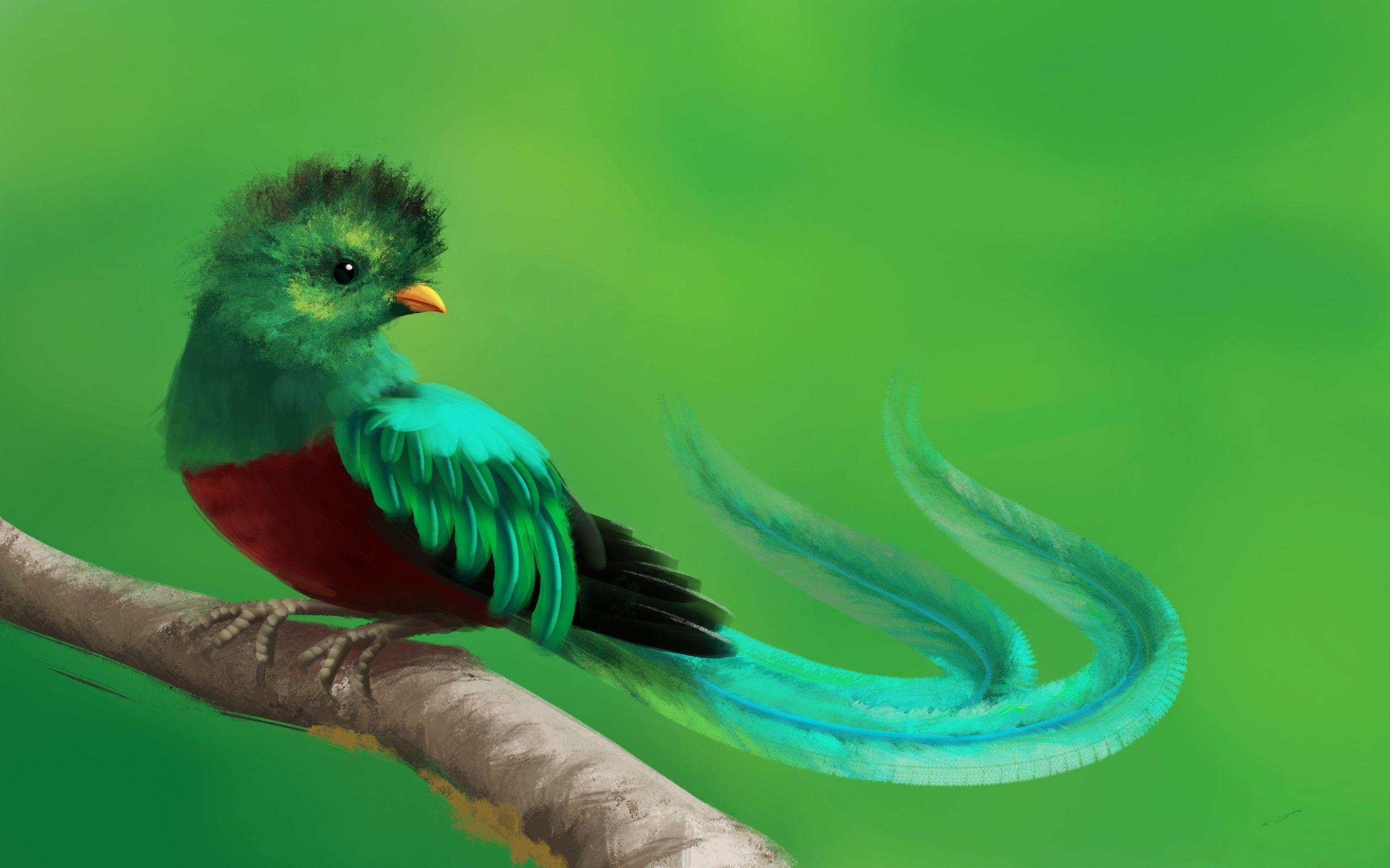 Pin On Ave Nacional De Guatemala El Quetzal Cadh