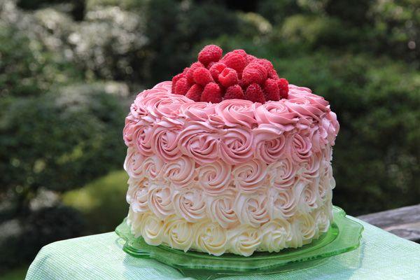 recipe: ombre rosette cake recipe [27]