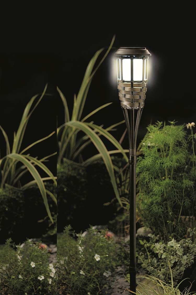 Rattan Bambú
