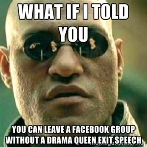 cdf067039f46b865abee7cb2361e6ffd what if i told you you can leave a facebook group without a drama