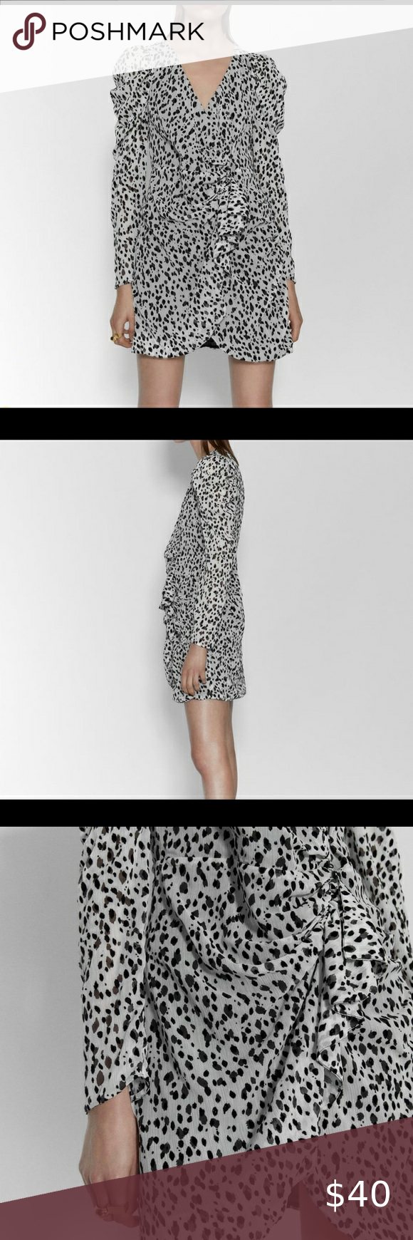 Zara Animal Print Mini Dress Ever Worn Ruffles Long Puff Sleeves Black And White Leopard Print Tag Animal Print Mini Dresses Printed Mini Dress Fashion [ 1740 x 580 Pixel ]