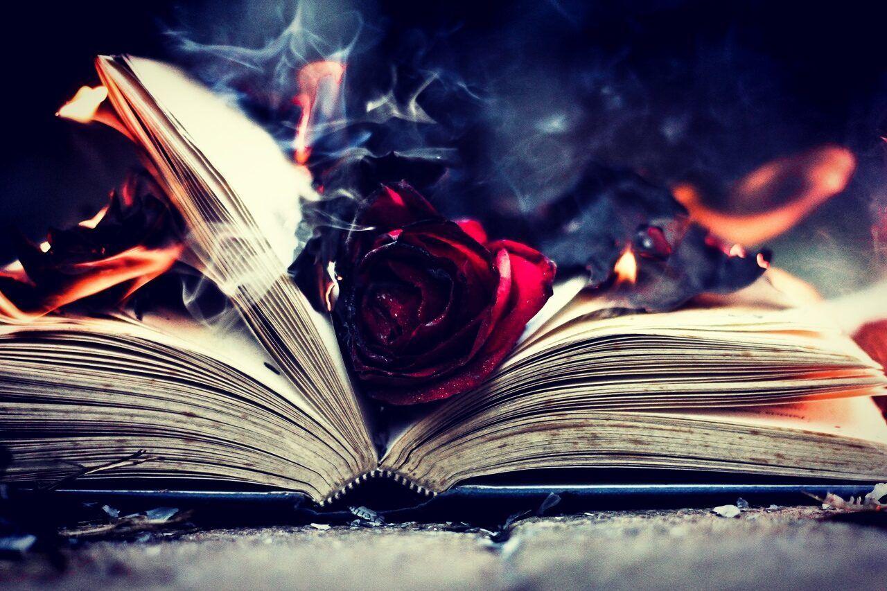 темные книги картинки приводит