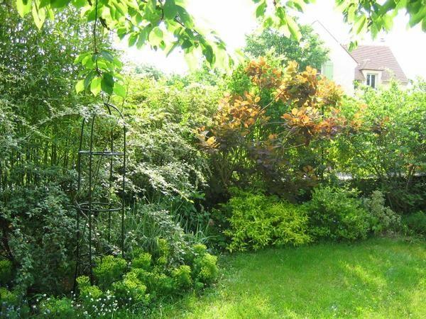 Nous sommes maintenant au fond du jardin l 39 id e tait de for Jardin avec arbustes