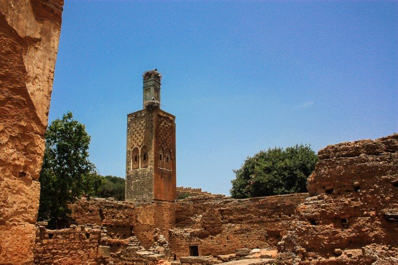 Chellah - Il Minareto