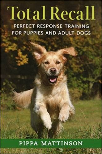 Total Recall Perfect Response Training For Puppies And Adult Dogs Amazon Co Uk Pippa Mattinson 9781846891496 Bo Dog Recall Dog Training Dog Training Books