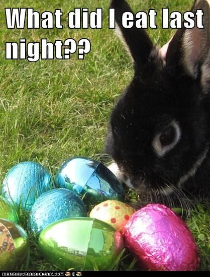 Funny Easter Captions : funny, easter, captions, Funny, Bunny, Easter, Humor,, Holiday