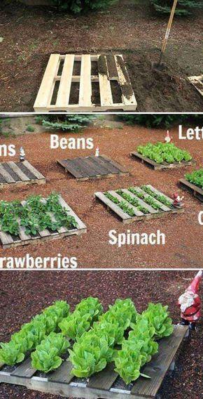 Palet de madera Jardinería vegetal | Más de 25 proyectos de jardines limpios con paletas de madera ...   - Easy DIY Garden -