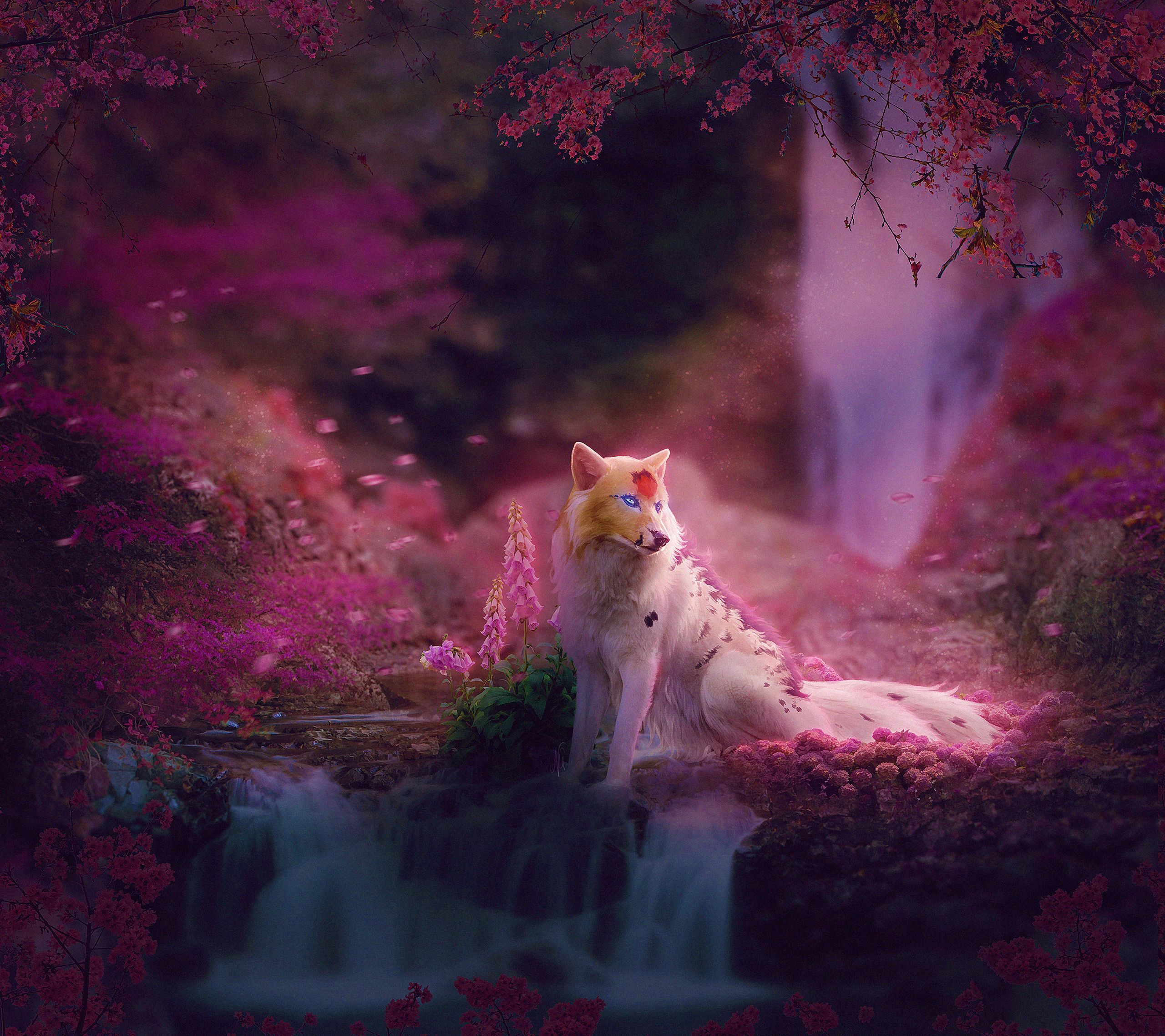 Fantasy Fox Fantasy Animals Hd Wallpaper Background Image Jpg Trend Fox Fantasy Wallpaper Backgrounds Hd Wallpaper