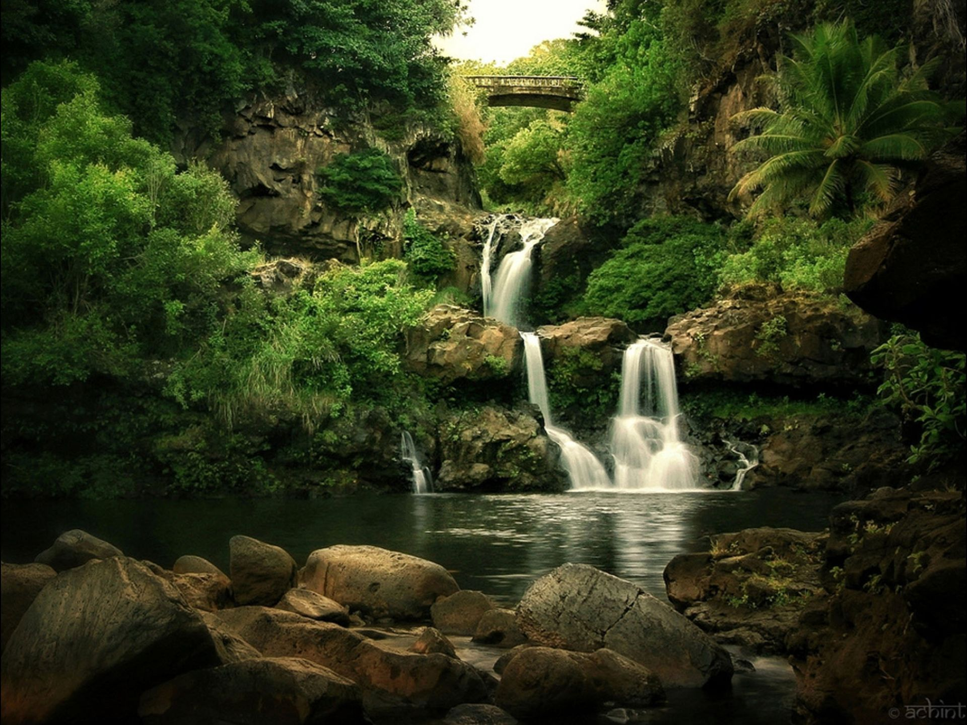 Top Secret Swimming Holes Swimming Holes Waterfall Pool Waterfall