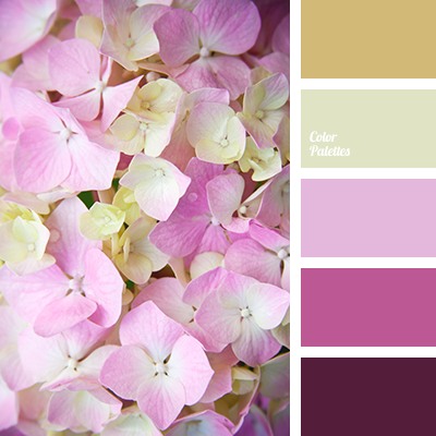 Bright Purple Yellow Color Matching Of Lilac Dark Design Scheme Light Clor