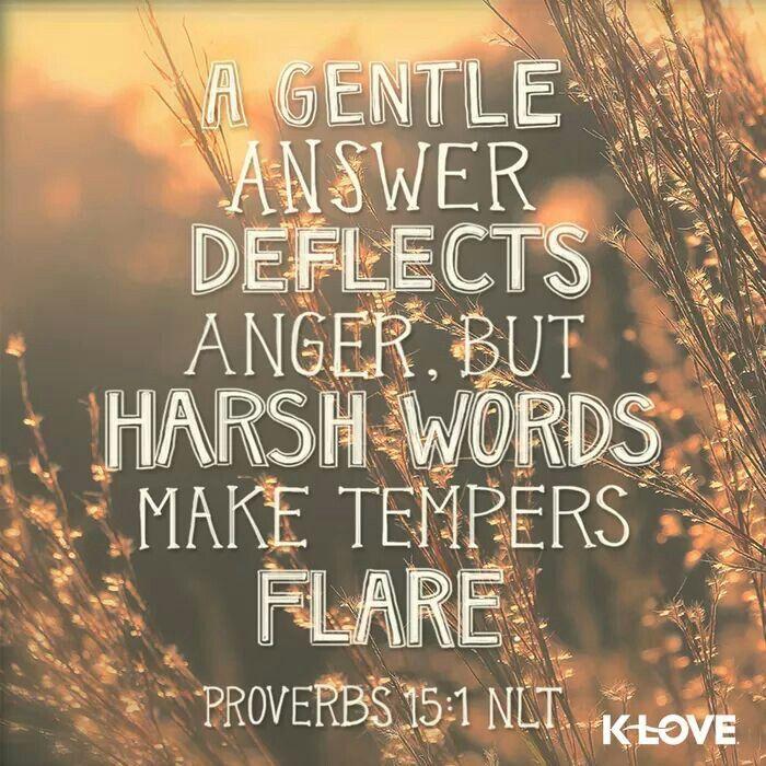 Proverbs 15:1 NLT