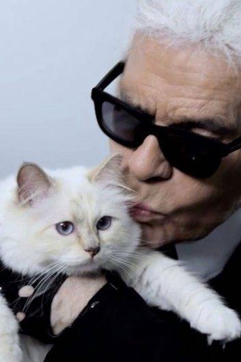 Karl Lagerfelds Cat All Things Style Pinterest Karl Lagerfeld