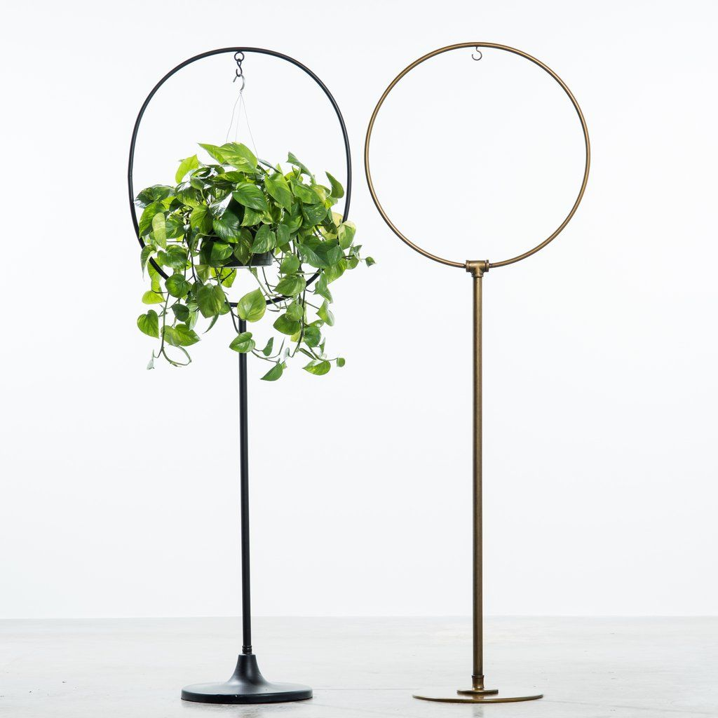 Olivia Plant Stand Hanging Plants Diy Plant Stand Hanging Plants Indoor