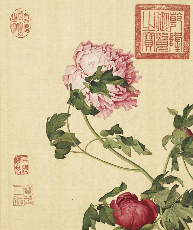 清 郎世寧 畫仙萼長春 冊 長春 壁画 絵画
