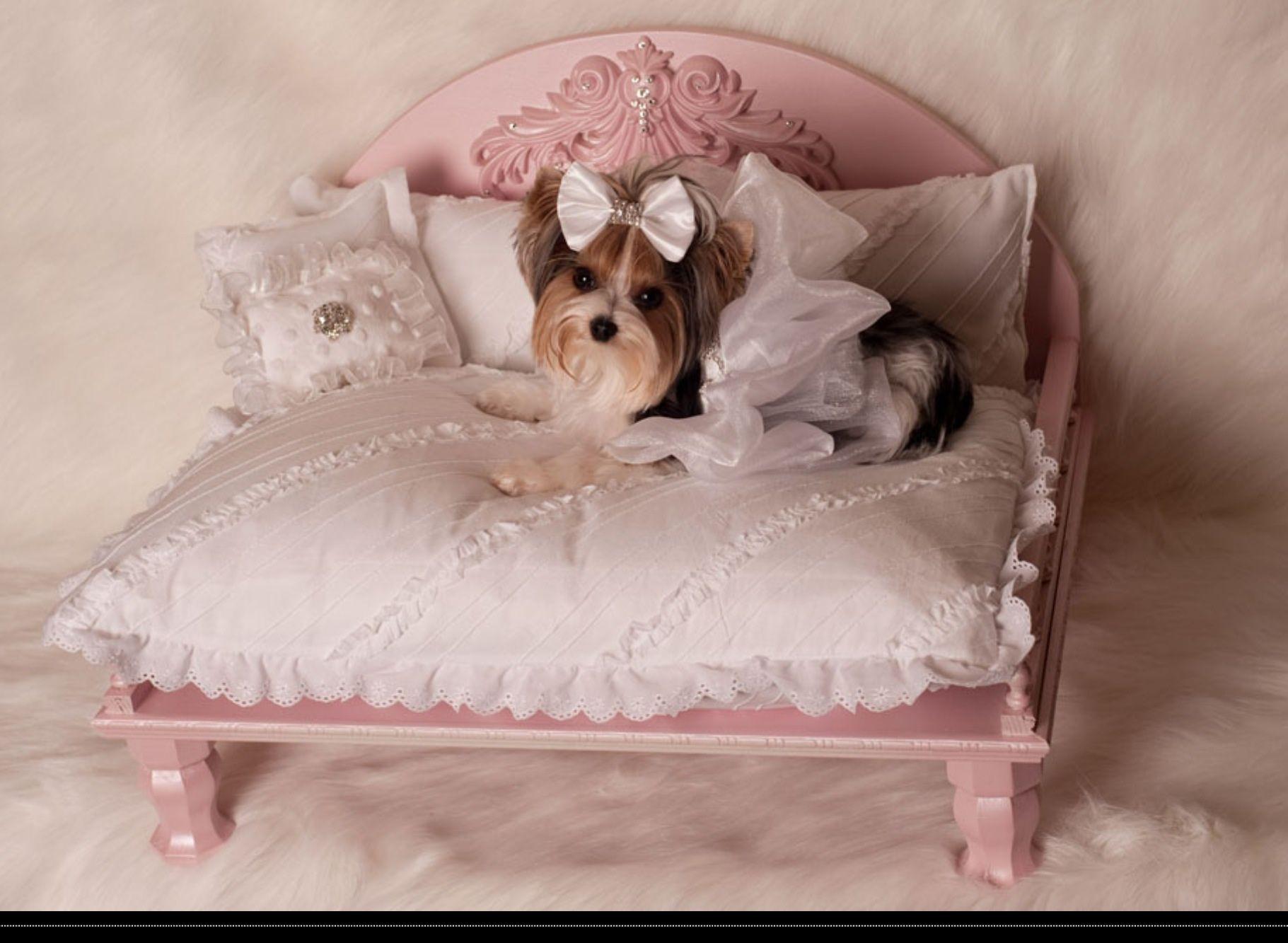 Yvette Ruta Daybeds Available At Etsy Dog Bed Luxury Designer Dog Beds Dog Furniture