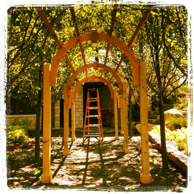 Freshly Pleached Tunnel Of Pear Trees With Images Garden Arch Landscape Outdoor