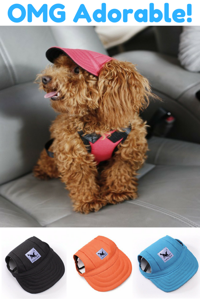 Super Cute Dog Hat Dog Hats Dog Hat Pattern Dog Hats Diy Dog Hat Pattern Sewing Dog Hat Crochet Dog Hats And Super Cute Dogs Diy Dog Stuff Dog Hat
