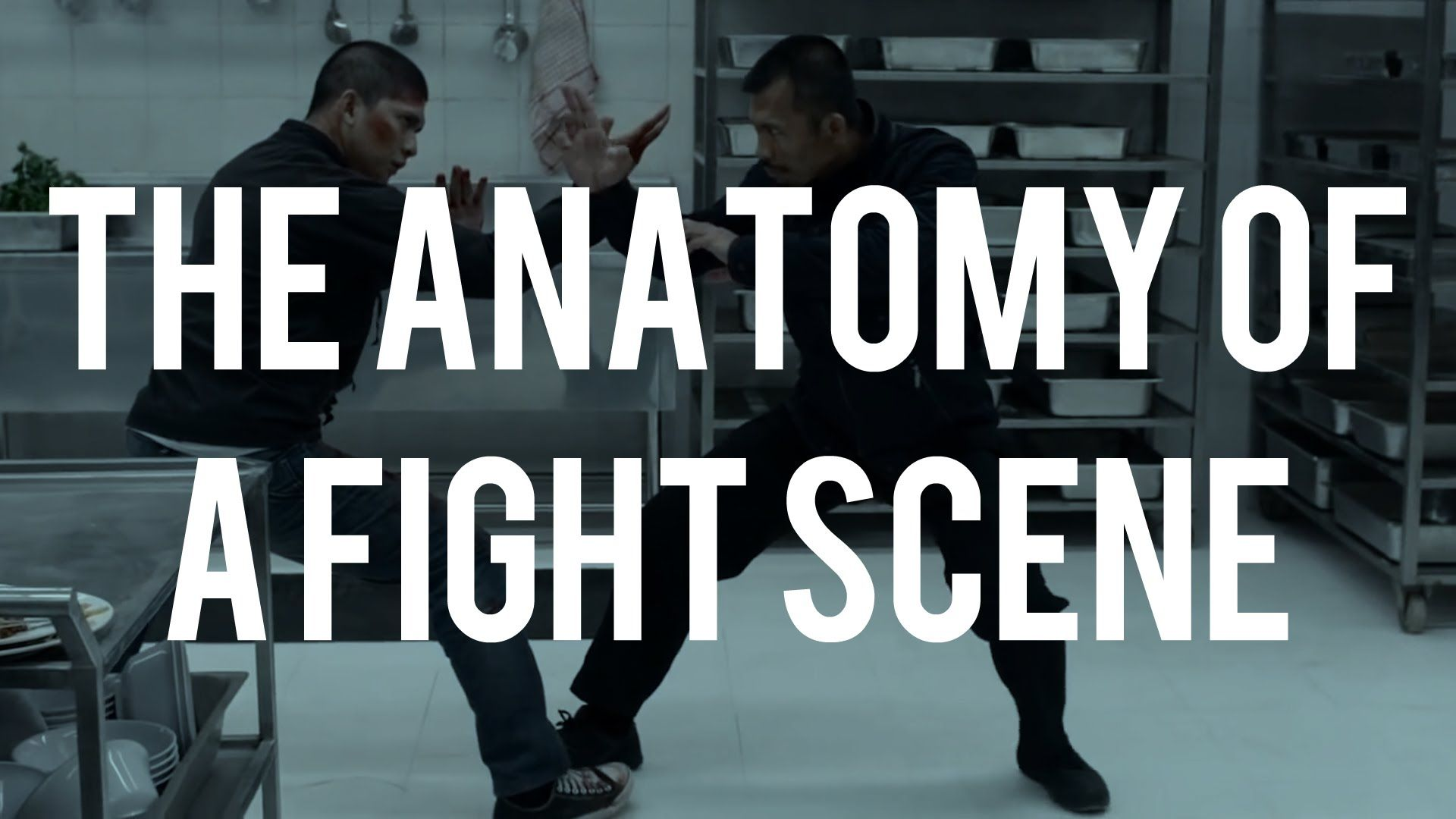 The Anatomy of a Fight Scene | Latest-movies | Pinterest | Anatomy ...