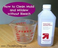 How to Get Rid of Mold and Mildew without Bleach! Easy DIY Recipe!