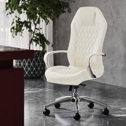 Symple Stuff Soliz Executive Chair Vozeli Com