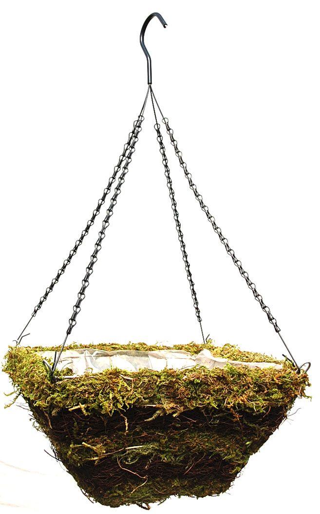 Green Moss And Twig Square Hanging Basket 14 Hanging Hanging Planters Hanging Rattan