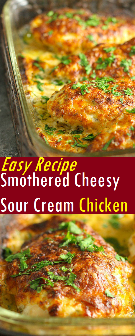 Easy Recipe Smothered Cheesy Sour Cream Chicken
