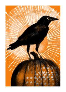 Sweet little raven.