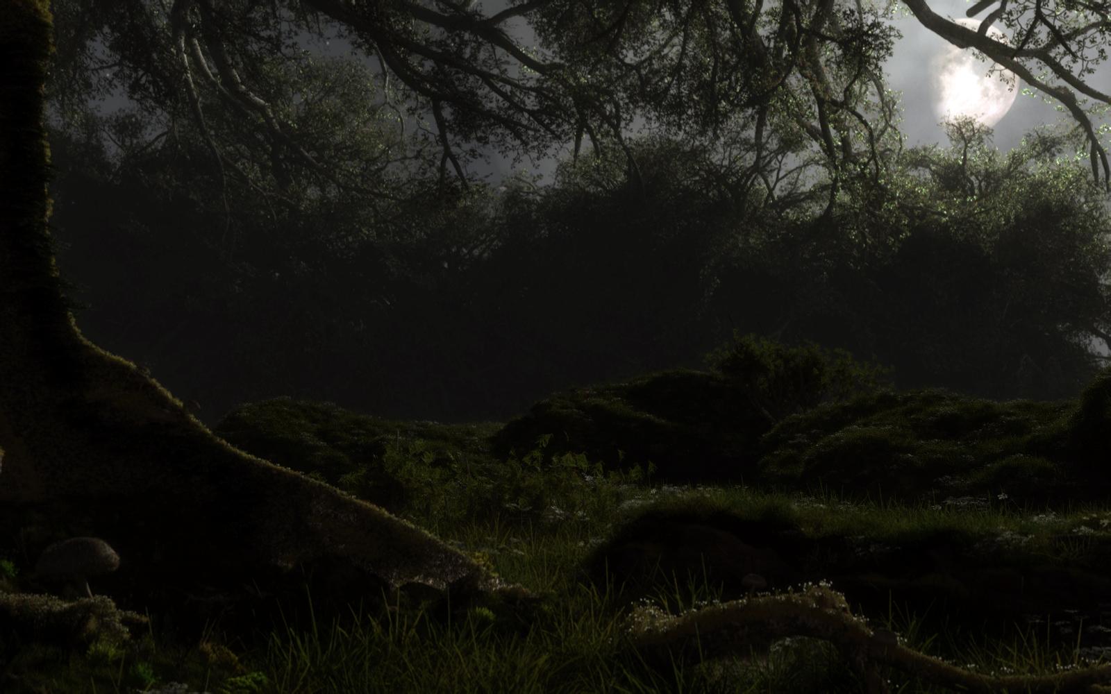 Обои misty, forest, Road. Природа