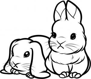 How To Draw Baby Rabbits Baby Rabbits Black And White Sometimes Its Easier Without Color Bunny Drawing Cartoon Drawings Rabbit Drawing