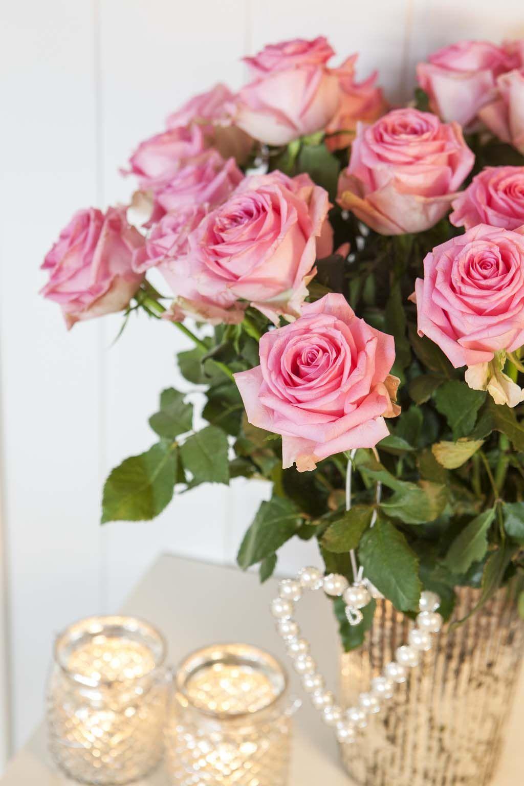 Vakre rosa roser