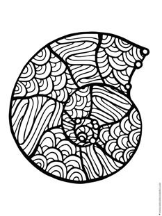 Seashell Coloring Pages 1 1 1 1 Coloring Pages Seashell