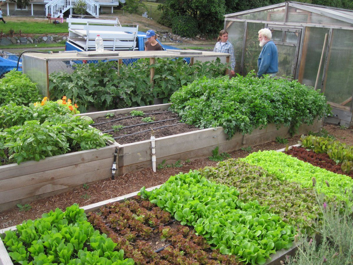 a visit to startnow gardens
