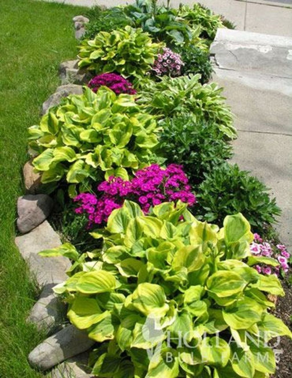 20+ Inexpensive Front Yard Landscaping Ideas #landscapingfrontyard