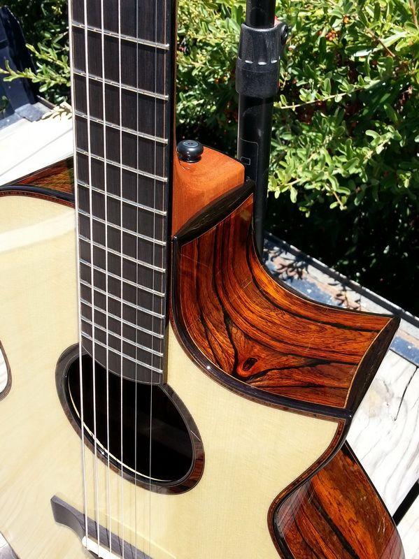Build Baranik Meridian Sick Cocobolo Blue Spruce Page 8 The Acoustic Guitar Forum Guitar Resonator Guitar Acoustic Guitar