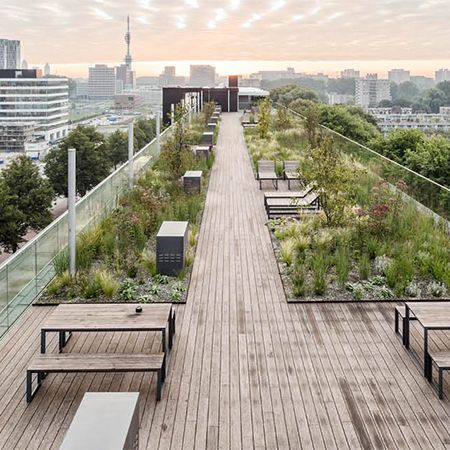 Easy Glass railing system for rooftop garden | Rooftop ...