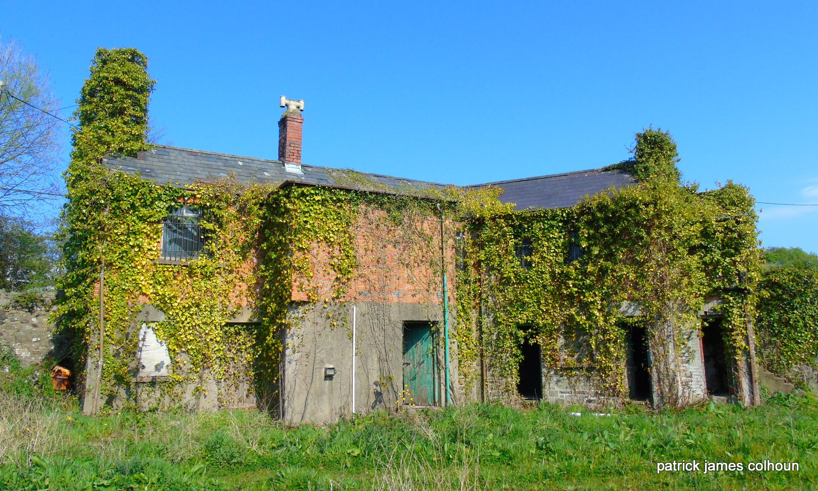 abandoned and overgrown,buncrana county donegal