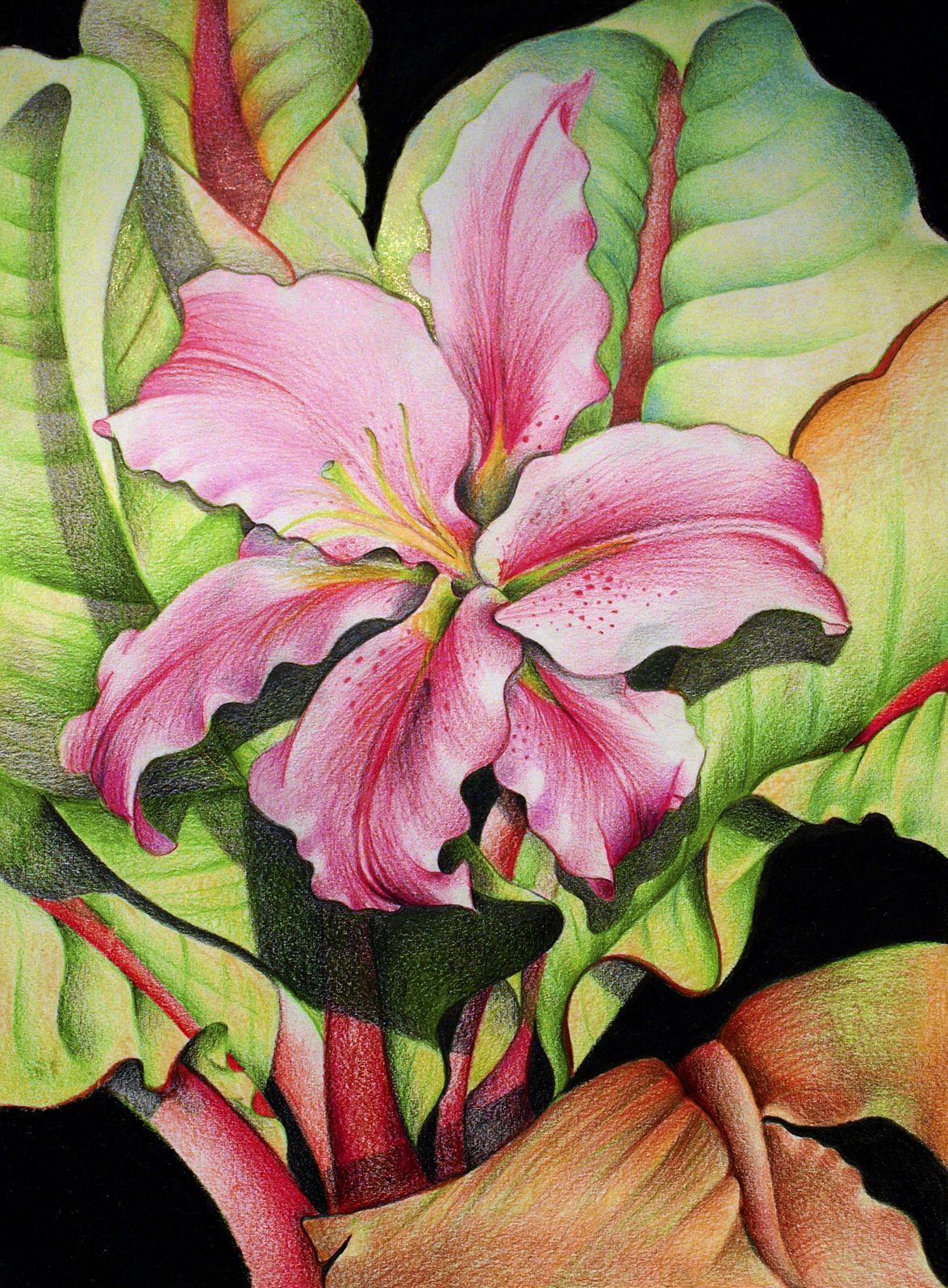 Diana arias spanish artist cicek pinterest spanish artists diana arias spanish artist izmirmasajfo
