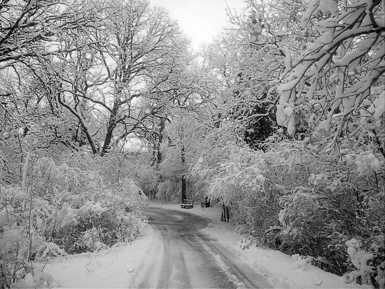 what to do in wisconsin in the winter