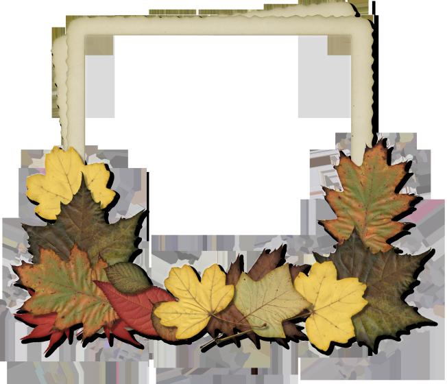 Hg Designs Halloween Frames Frame Autumn Leaves