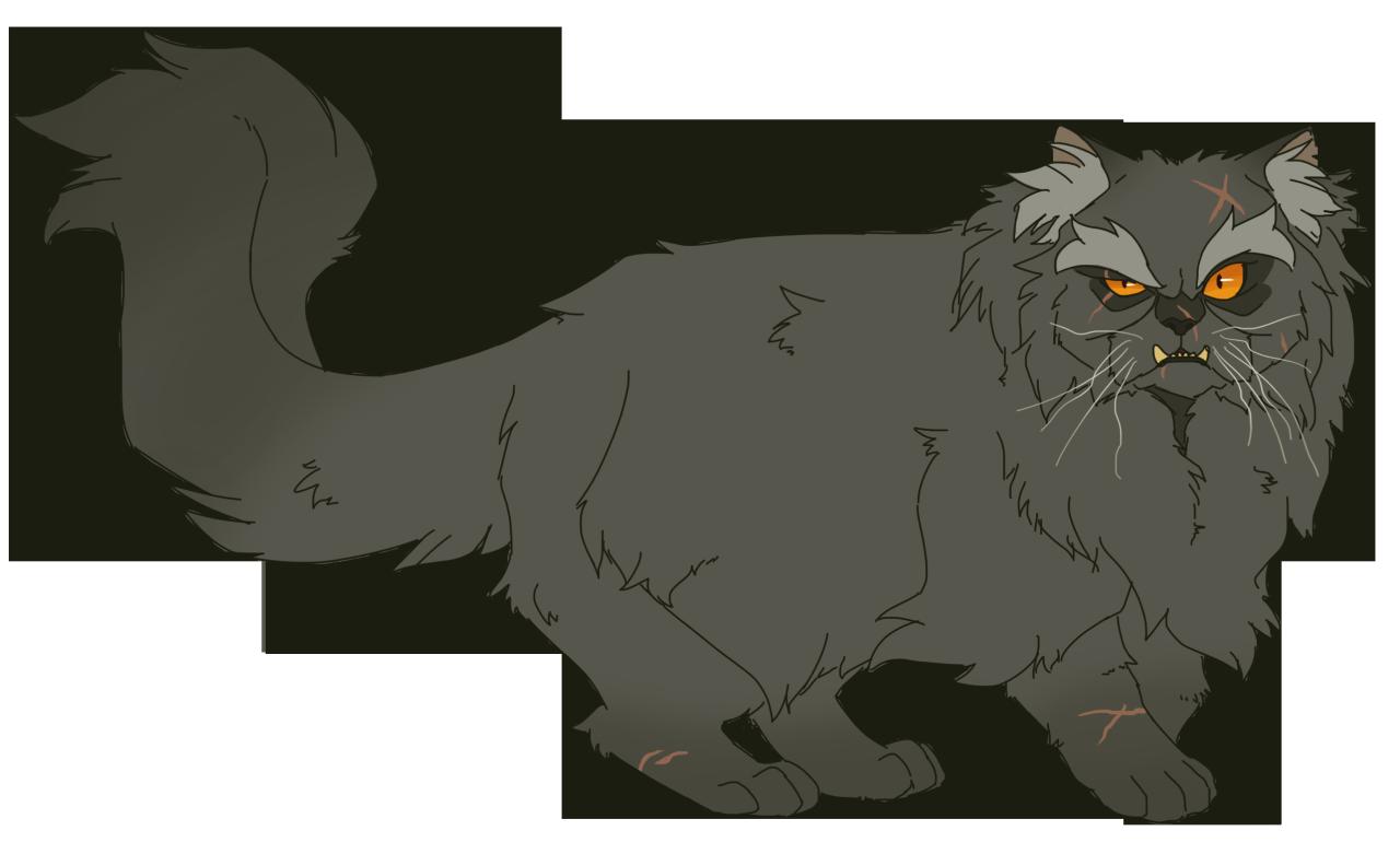 Картинки коты воители щербатая
